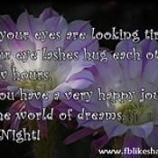 Since your eyes are looking tired - Good Night Quotes.