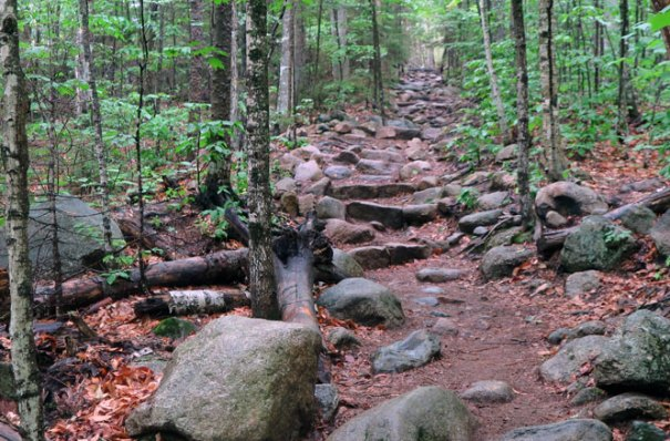 Arethusa Falls Trail
