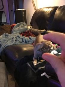 Crushing his head