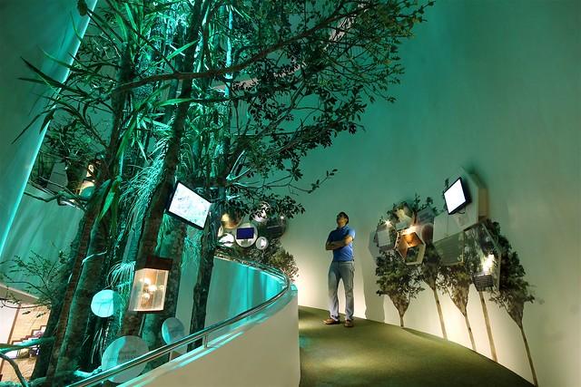 Mount Hamiguitan Natural Science Museum