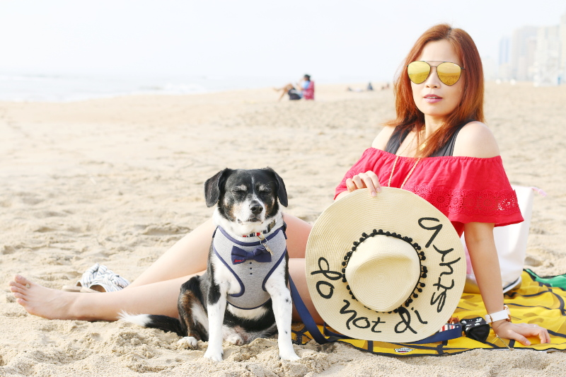 ocean-front-virginia-beach-dog-offshoulder-red-top-1