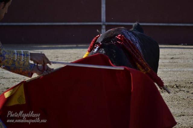 1ª de la Feria 2017 Las Navas del Marqués