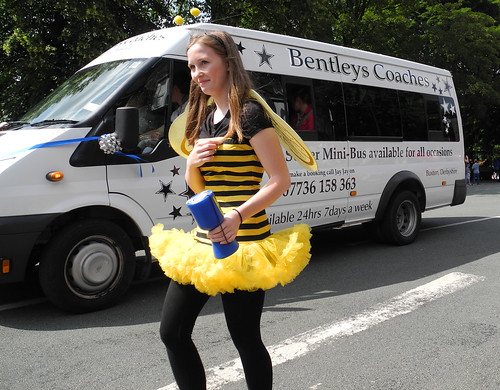 Manchester Bee, at Buxton Carnival 2017