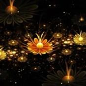 flowers wallpaper - 3d abstract wallpaper download for desktop.