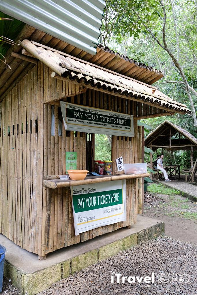菲律宾薄荷岛眼镜猴保育中心 Tarsier Sanctuary (4)