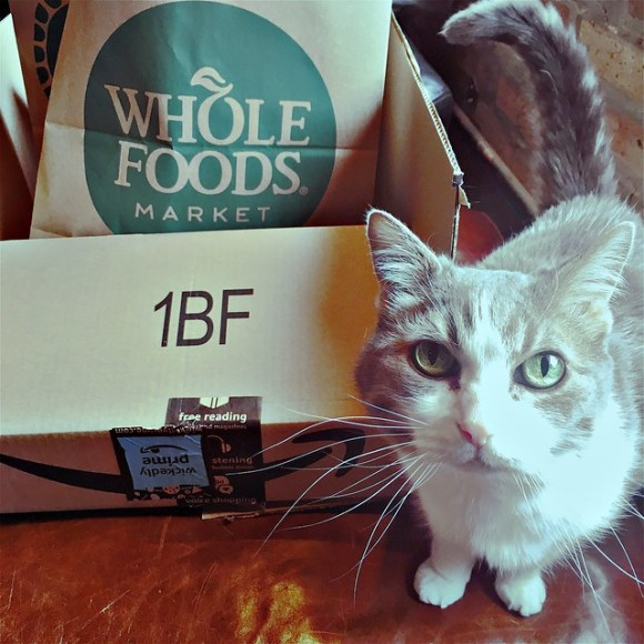 Whole Foods Amazon and The Pope