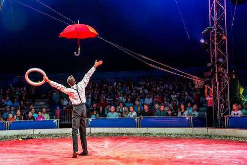 Time Travel and Rain at Circus Flora