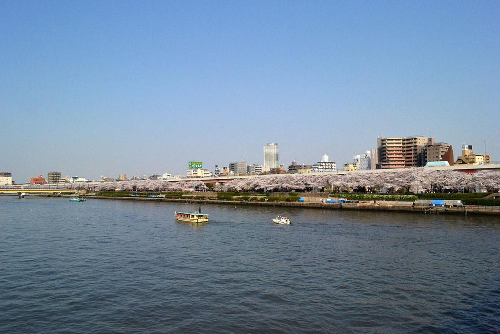 隅田公园 (1)