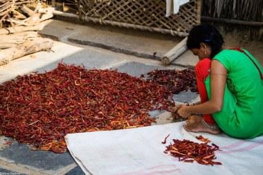 lust-4-life travel blog hampi india-14