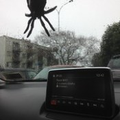 Giant spider sighted in Onehunga... well not really... it's my new car air freshener!! It rocks. So me!