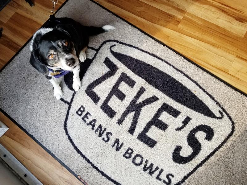 zekes-beans-bowls-coffee-shop-dog-28