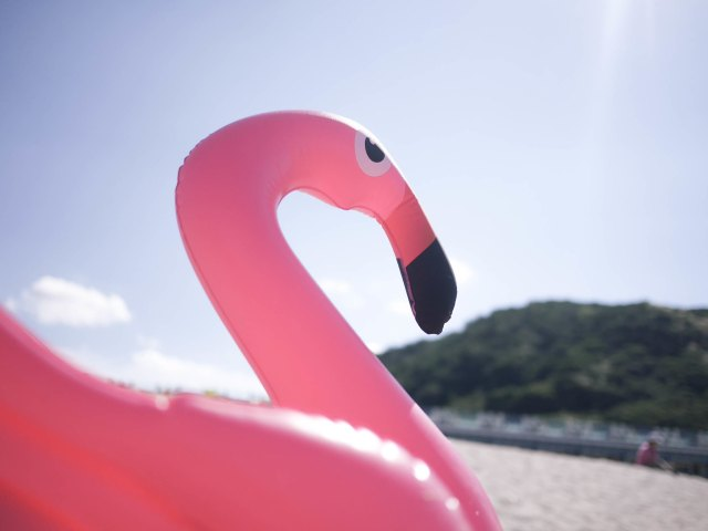 Simple ways to stand out like a pink flamingo