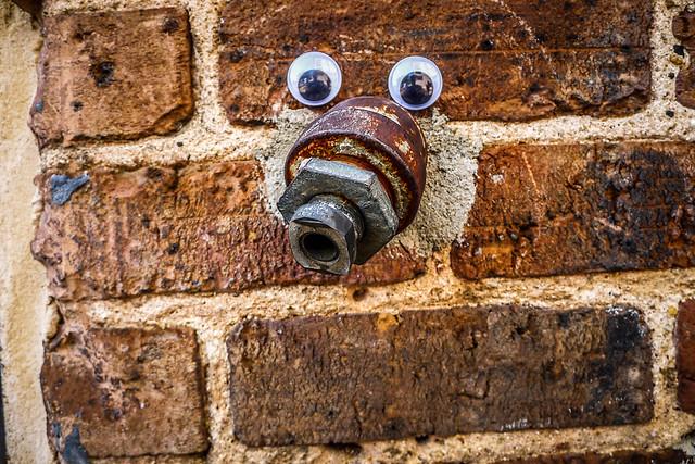 Googly-Eye Bombing Downtown Greenville-96