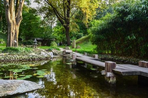Japanese Garden in Jevremovac