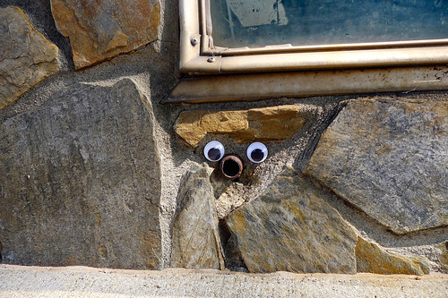 Googly-Eye Bombing Downtown Greenville-109