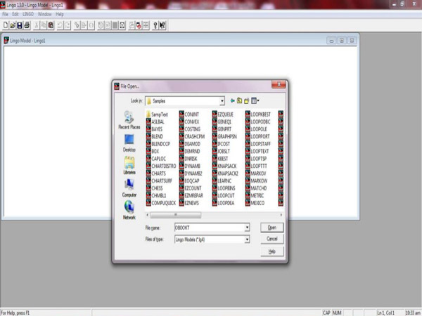 Working with Lindo LINGO 17.0.60 x86 x64 full license