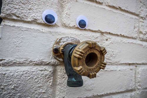 Googly-Eye Bombing Downtown Greenville-102