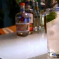 Cocktail Recipe: Juliette's Garden G&T