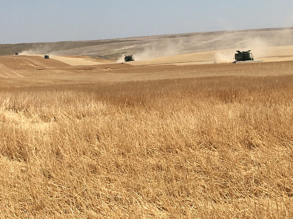 High Plains Harvesting 2017 (Mark)