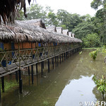 Viajefilos en la Amazonia, Peru 002