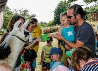 Familiensommer 2017 - Lamas