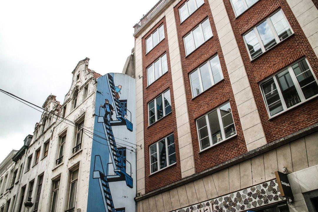 Tintin, Bruxelles