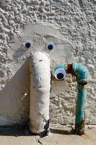 Googly-Eye Bombing Downtown Greenville-60