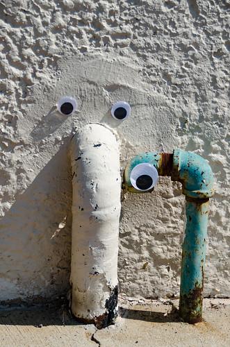 Googly-Eye Bombing Downtown Greenville-60