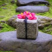 Honenin Temple, Kyoto