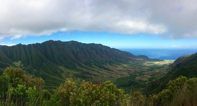 Picture from the Mokuleia Trail