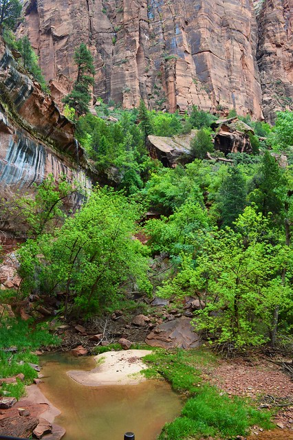 Lower Emerald Pool Trail Zion National Park