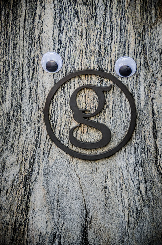Googly-Eye Bombing Downtown Greenville-75
