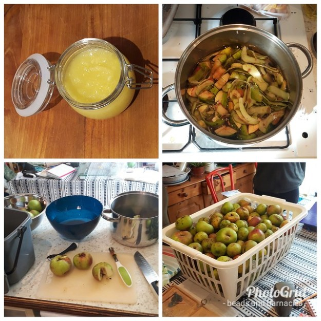 Garden produce/ food