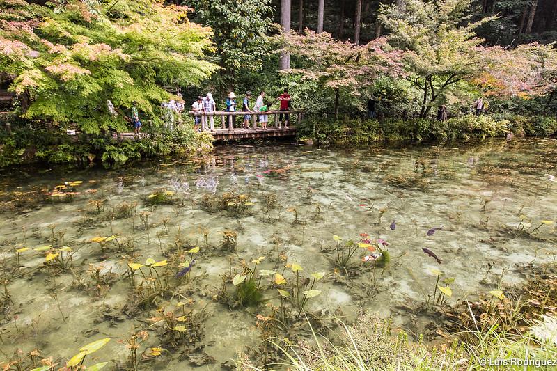 Estanque-Monet-Gifu-7