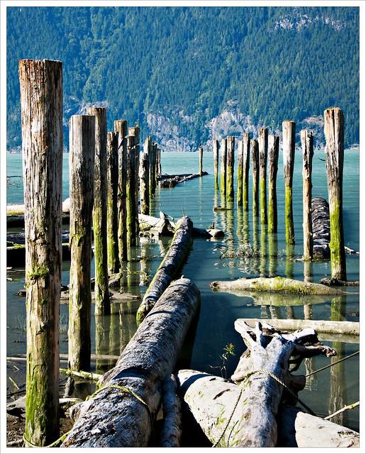 Abandoned pilings