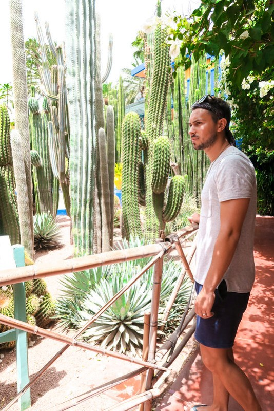 Wanderlust Us Travel Blog - Exploring the Maze of Morocco