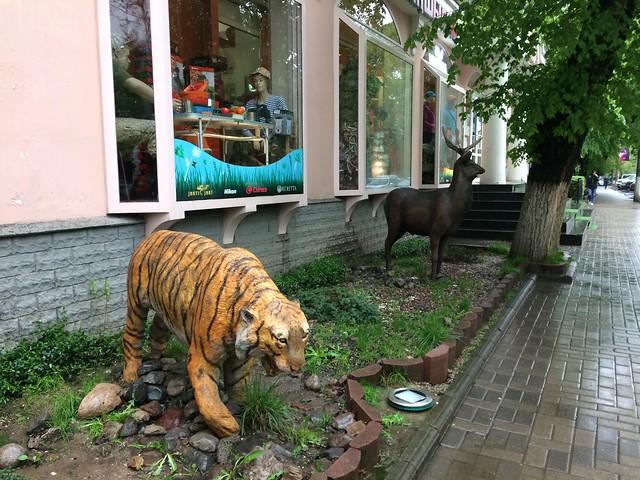 Street view, Almaty