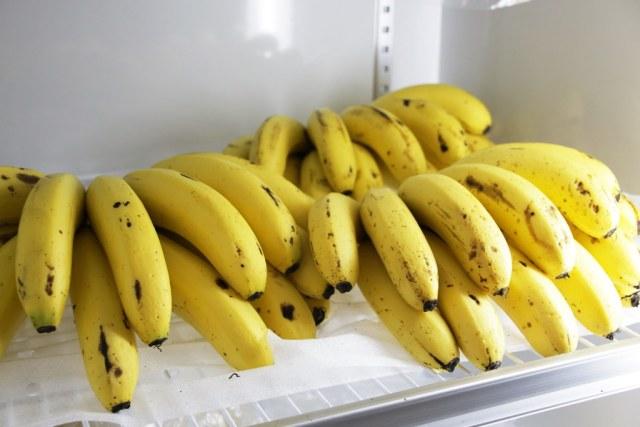 台灣香蕉科技園區 (13)