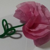 Coffee Filter Flower (Stained with Cranberry Tea).