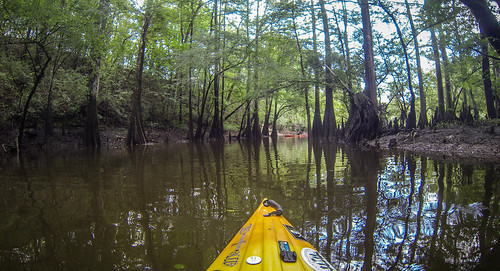 Lynches River with Lowcountry Unfiltered-37