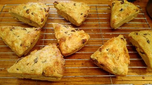 Raisin scones