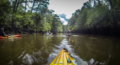 Lynches River with Lowcountry Unfiltered-25