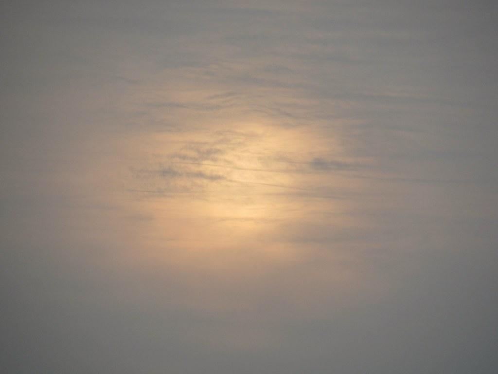 Douceur du soleil voilé