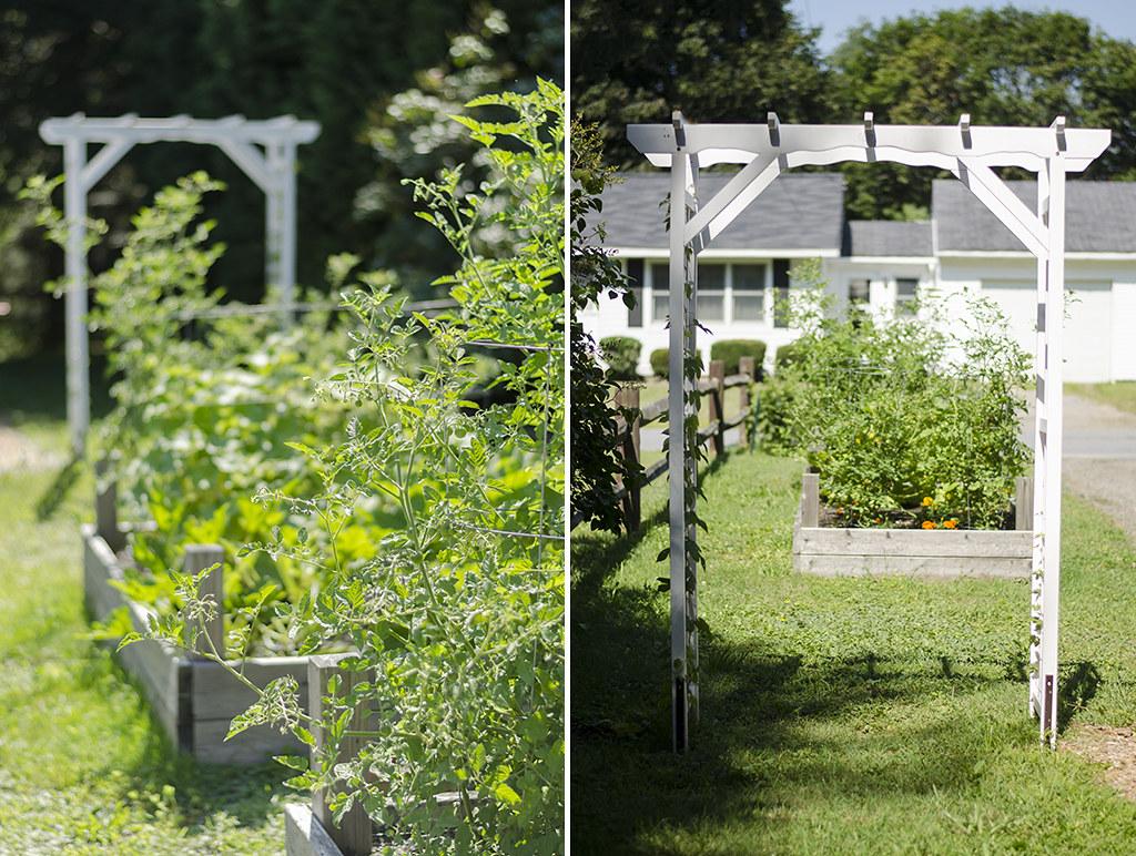 garden 2017 collage 1