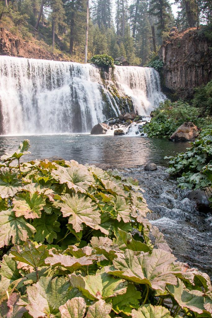 08.19. McCloud River Falls