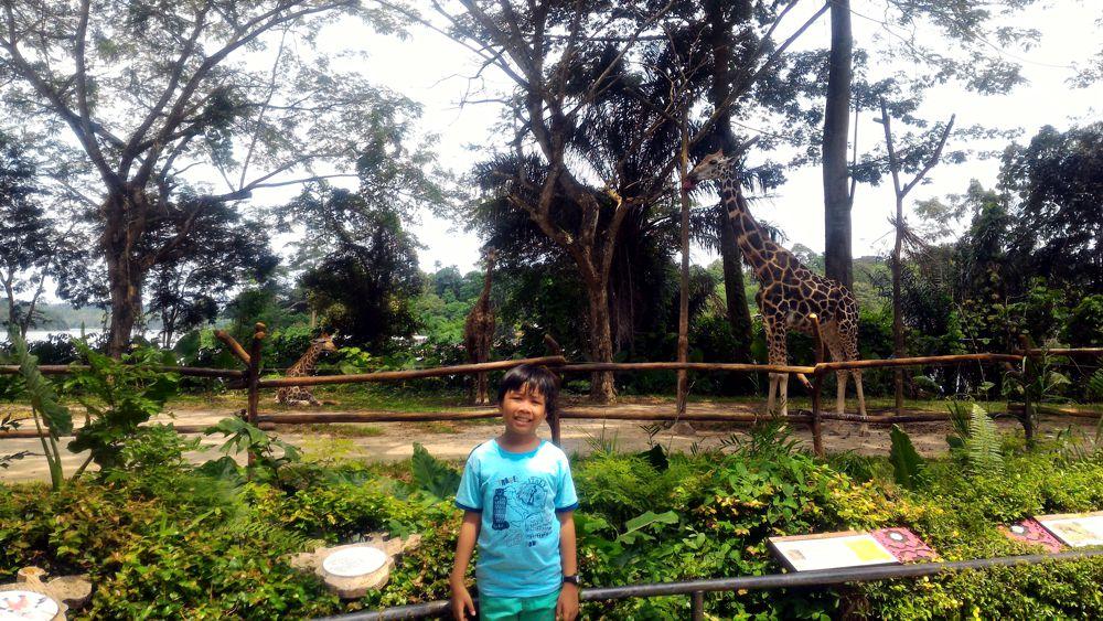 Singapore Zoo 6_zps6b64i8rn