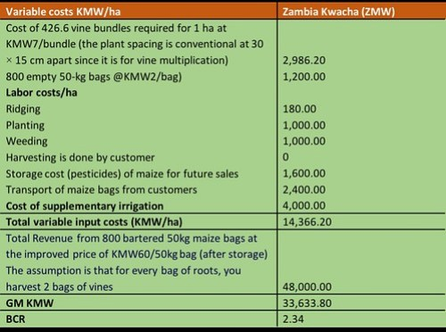Table summarizing profitability analysis for orange fleshed sweet potato production by the Mumbas. From Africa RISING success story - Farmer finds a sweet spot producing orange-fleshed sweetpotato vines and roots during the dry season in Zambia.