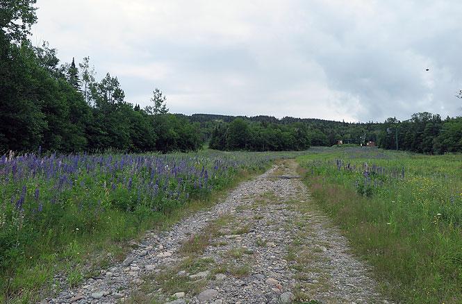 Saddleback Resort Hike Road