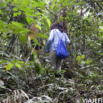 Viajefilos en la Amazonia, Peru 041