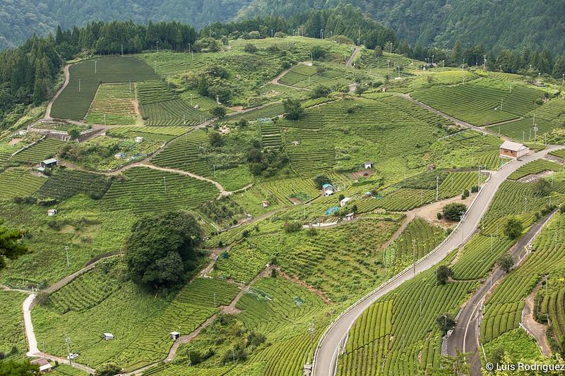 Machu-Picchu-Gifu-23